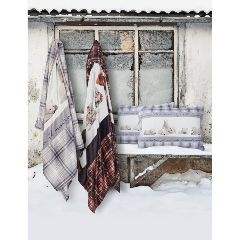 plaid casa anversa dolci rifugi cani e gatti orsetti polari. Black Bedroom Furniture Sets. Home Design Ideas